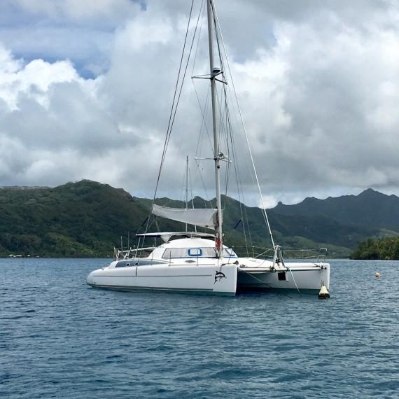 Trampolinnetz für Fidji 39