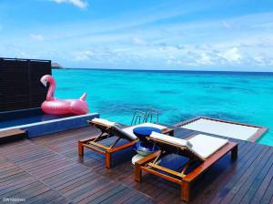 W Maldives - Filet de catamaran pour terrasse
